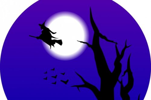 Article : Halloween et Compagnie